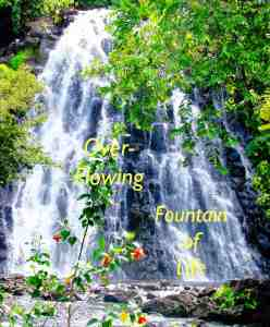 Pohnpei Waterfall For Blog